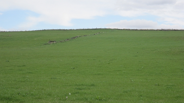 Fields, Muirhouse