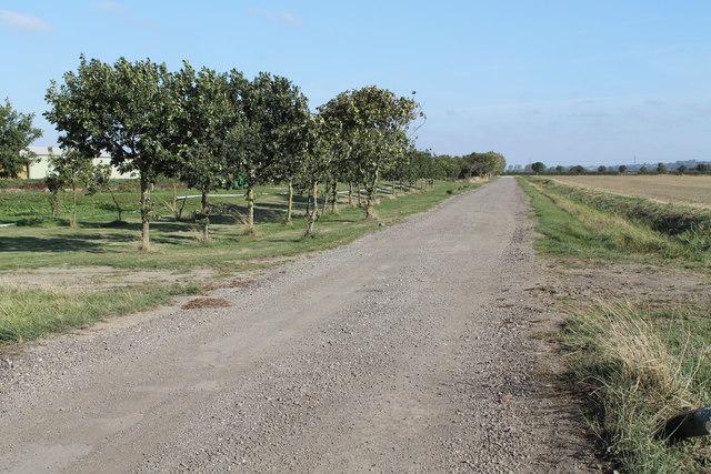 Parson Lane