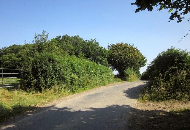 Lane to Adworthy