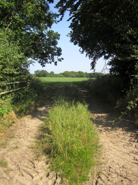 Track east of Rackleigh Moor