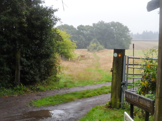 Footpath to Peaslake