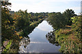 NT0875 : View South from Bridge 33 by Anne Burgess