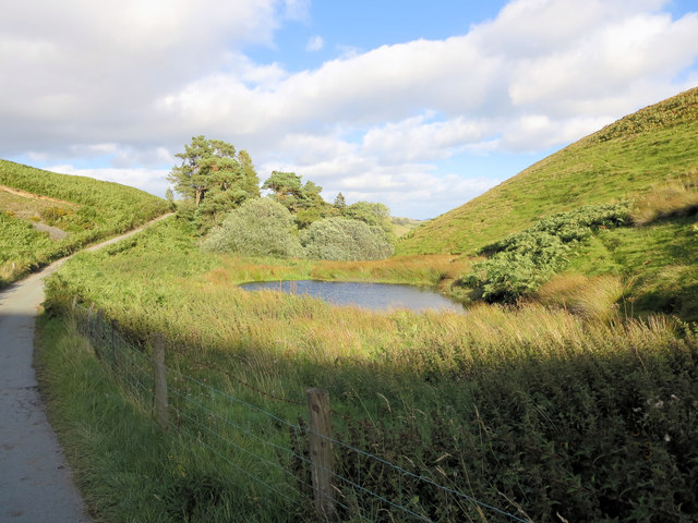 A tarn beside the lane