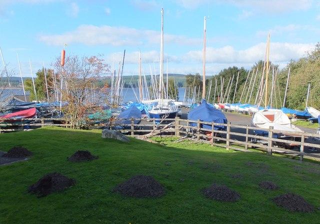 Mass of masts and massive molehills