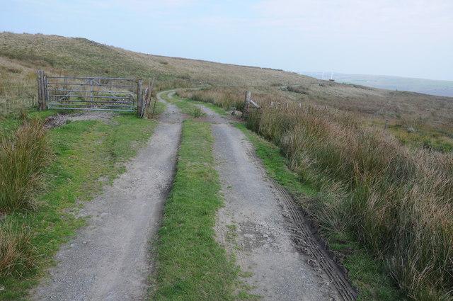 Upland track