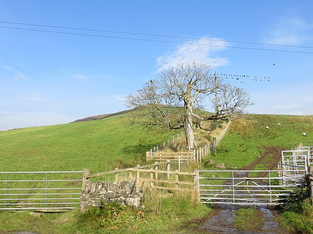 Foot of Kilbride Hill