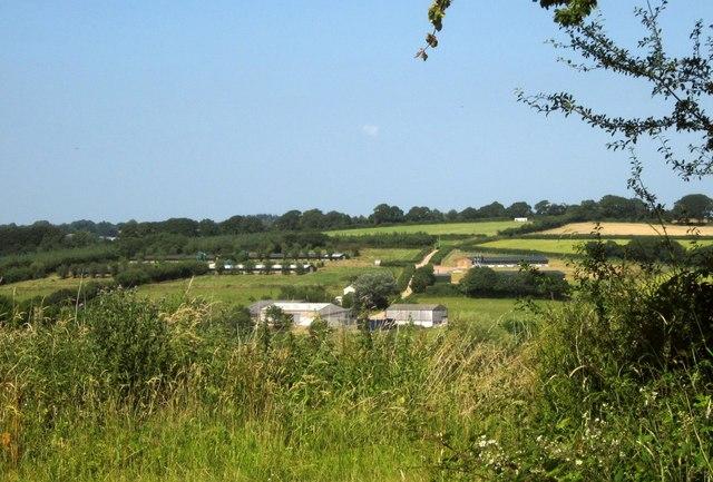 Hellinghayes Farm