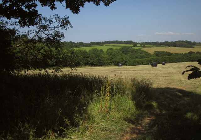Field, Lower Adworthy