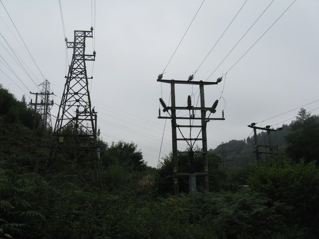 Pylon plantation in the Forest of Dean