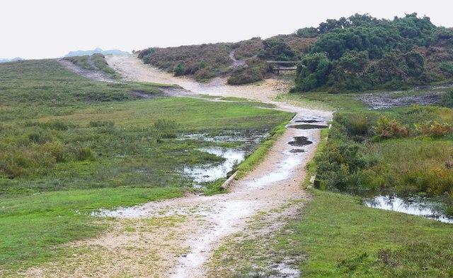 Footpaths near Holmhill Bog