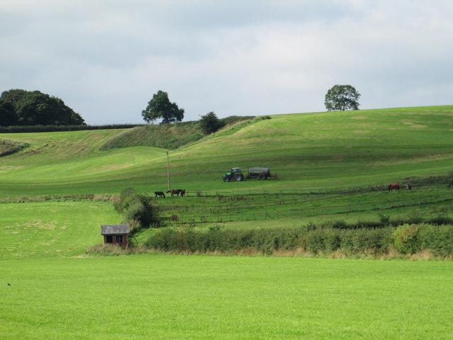 Muckspreading near Abbey Green