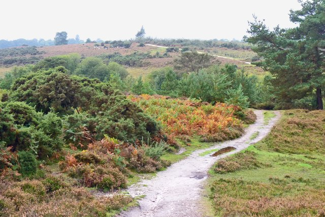Pathway near Duck Hole