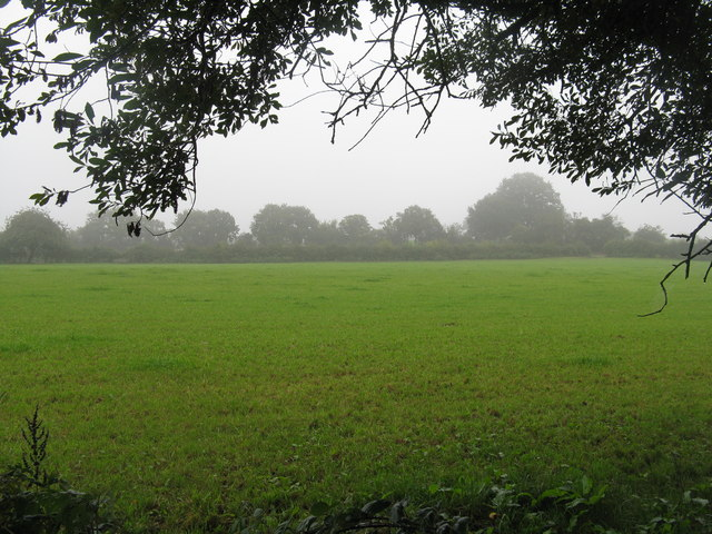 Grass field at Allaston