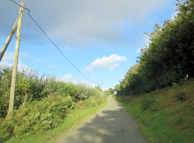 Un-named lane southwest of Plas Tregeiriog