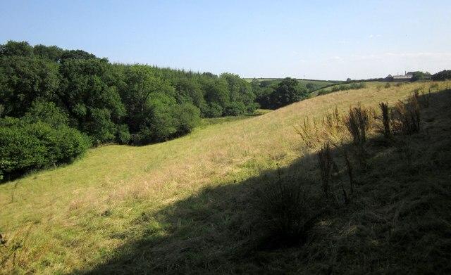 Adworthy Brook valley