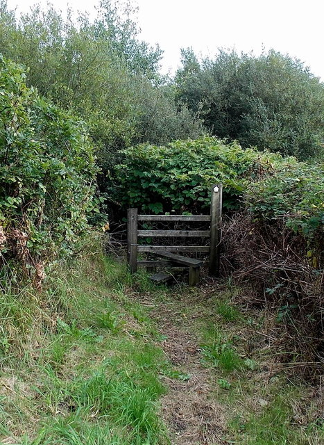 Stile across a track between Grovesend and Gorseinon