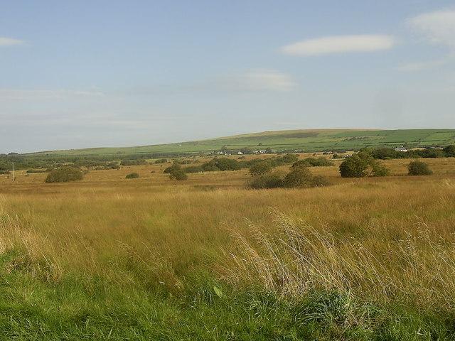 Puncheston Common