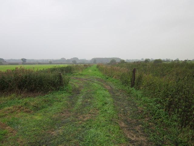 Farm track near Aldford Brook