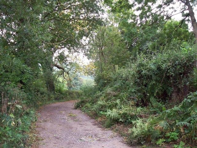 Leylands Lane