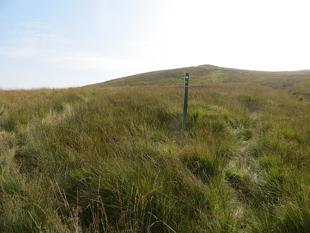Waymark in the bog
