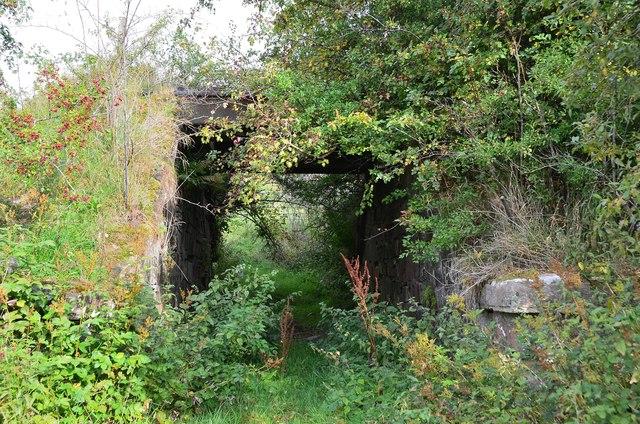 Field access bridge, former railway line