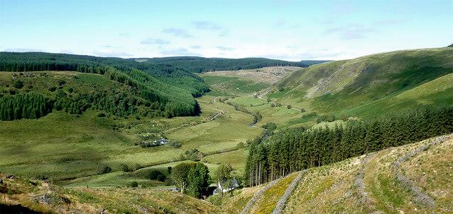 Cwm Tywi from Coed Nantyrhwch, Powys