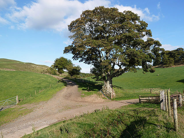 Farmland at Howden