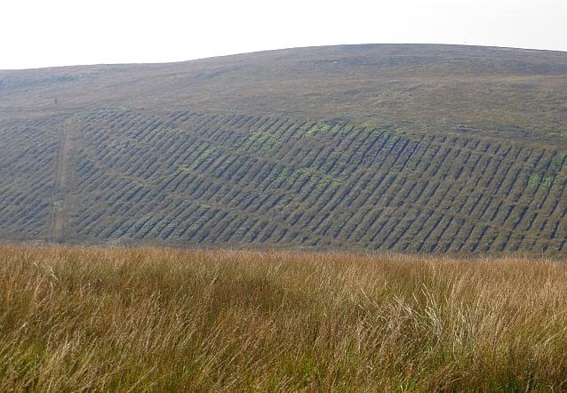 Kilbride Hill