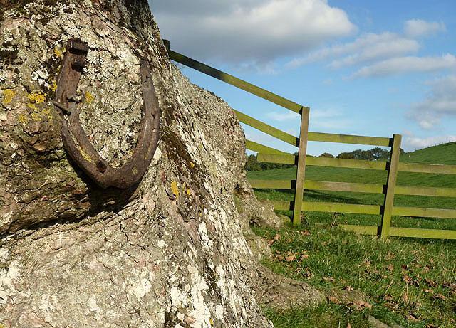 A good luck charm on Howden Hill farmland
