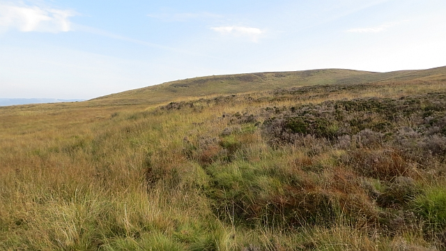 North Bute moorland