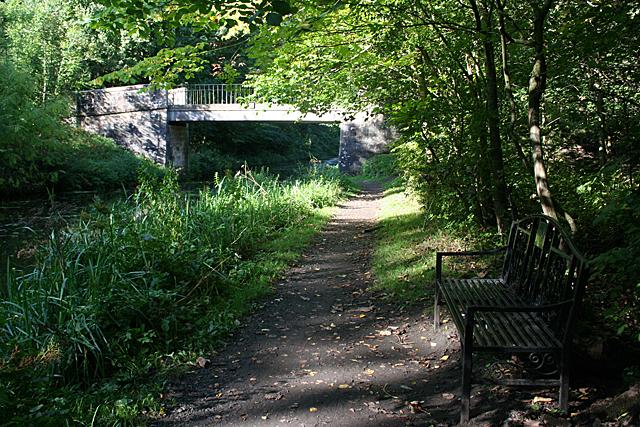 A Bridge and a Bench