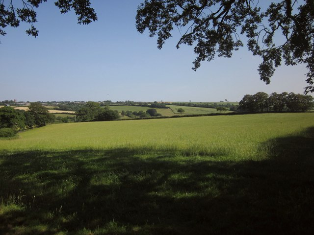 Grass field near West Yeo