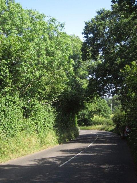 B3137 near Woodpark Copse