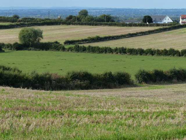 Fields on the edge of Kegworth