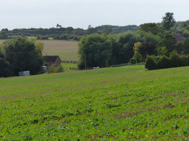 Farmland near Spring House Farm