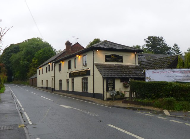 Stoford, The Swan