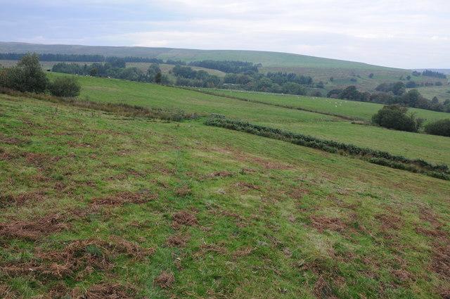 View north-west from Mynydd Cerrigllwydion