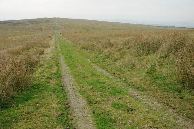 Track on Mynydd Glogau