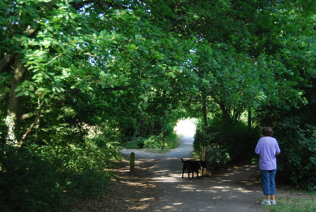 Walking the dog, Jubilee Country Park