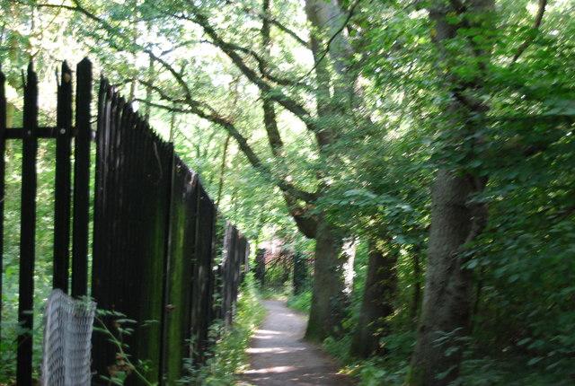 LOOP in Jubilee Park