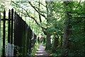 TQ4368 : LOOP in Jubilee Park by N Chadwick