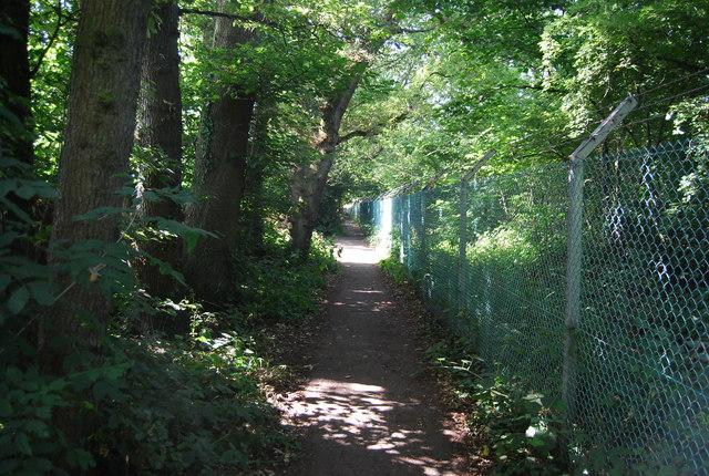 LOOP near Petts Wood