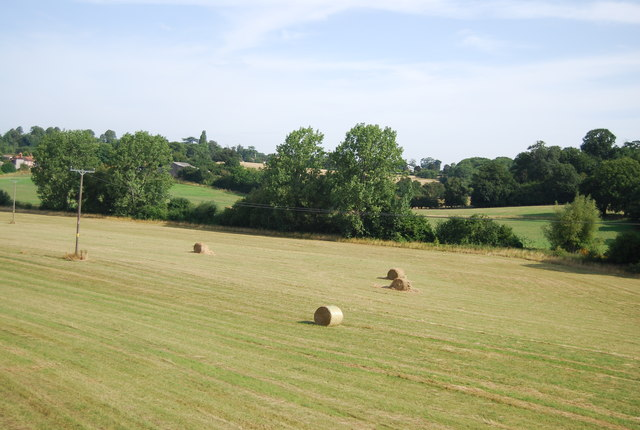 Bales in a field