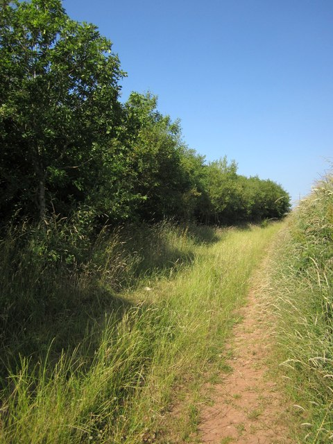 Path to Dart Raffe Farm