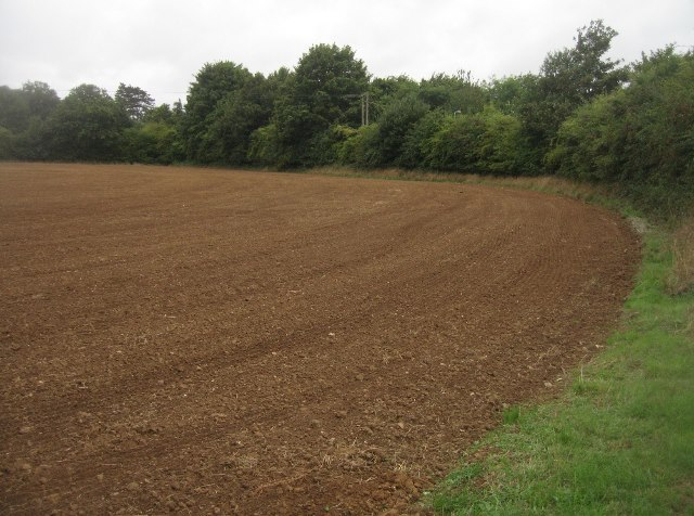 One end of Goddards Field (20.5 acres)