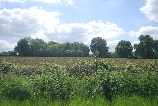 Farmland by the railway