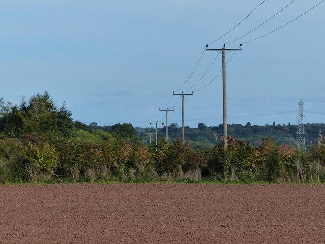 Electricity poles and farmland