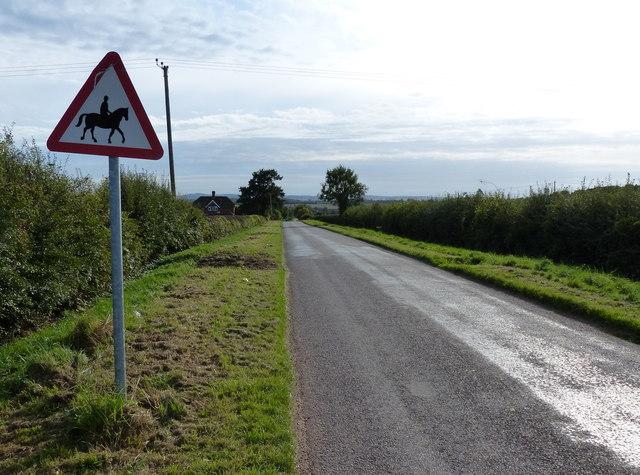 Kegworth Lane heading south towards Long Whatton