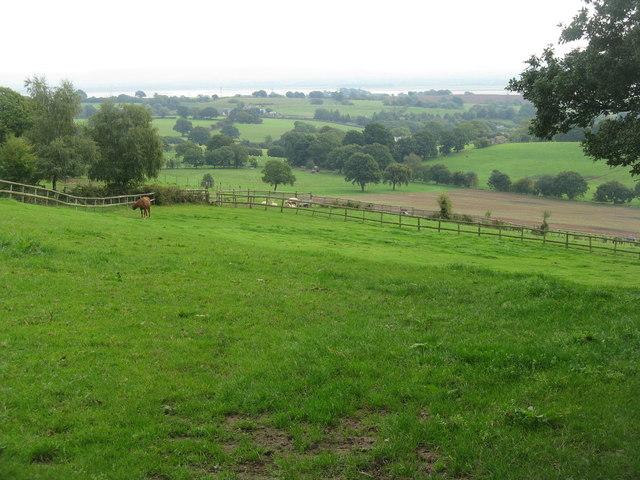 Farmland at Nedstop Farm