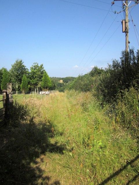Track, Dart Raffe Farm